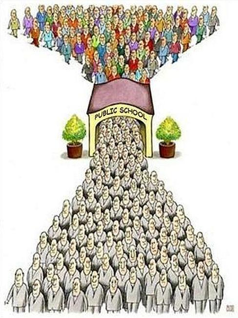 public education system brainwashing machine